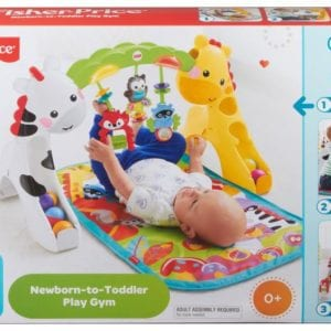 NEWBORN TO TODDLER GYM Fisher price
